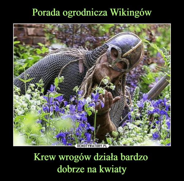 Krew wrogów działa bardzo dobrze na kwiaty –