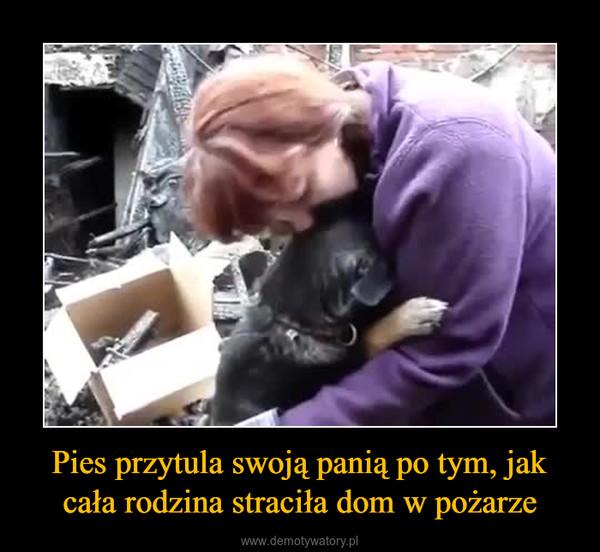 Pies przytula swoją panią po tym, jak cała rodzina straciła dom w pożarze –
