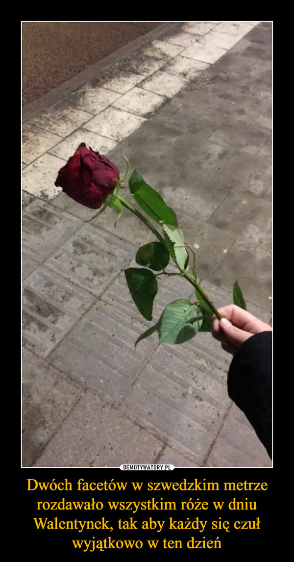 Dwóch facetów w szwedzkim metrze rozdawało wszystkim róże w dniu Walentynek, tak aby każdy się czuł wyjątkowo w ten dzień –