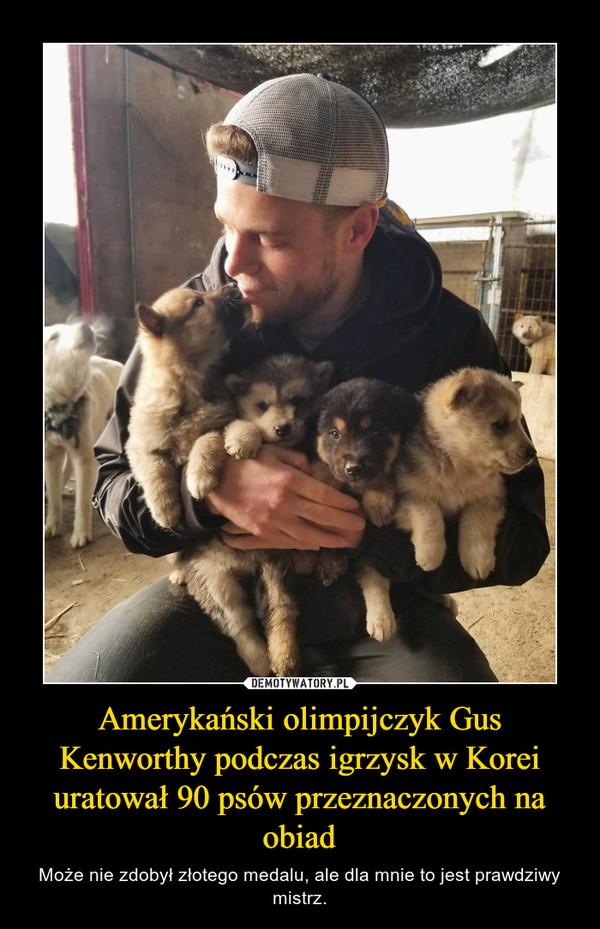 Amerykański olimpijczyk Gus Kenworthy podczas igrzysk w Korei uratował 90 psów przeznaczonych na obiad – Może nie zdobył złotego medalu, ale dla mnie to jest prawdziwy mistrz.