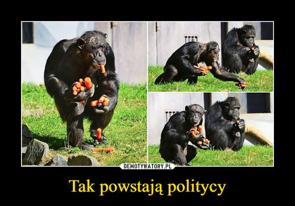 Tak powstają politycy –
