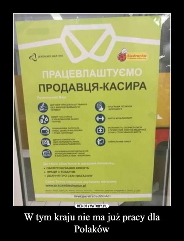 W tym kraju nie ma już pracy dla Polaków –
