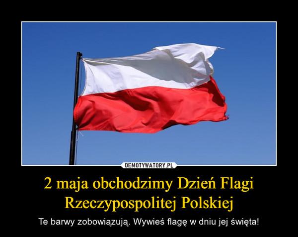 2 maja obchodzimy Dzień Flagi Rzeczypospolitej Polskiej – Te barwy zobowiązują. Wywieś flagę w dniu jej święta!
