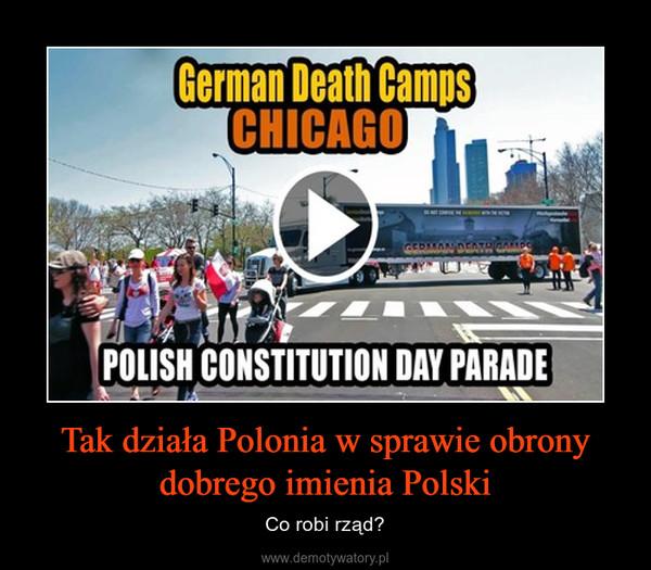 Tak działa Polonia w sprawie obrony dobrego imienia Polski – Co robi rząd?