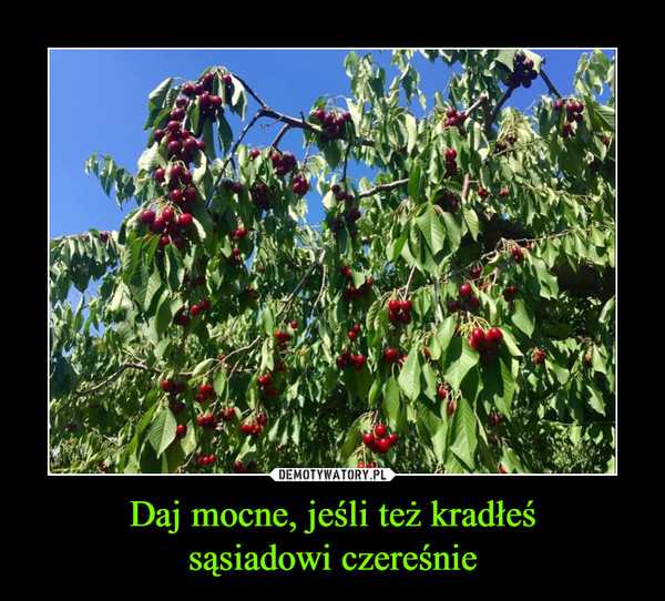 Daj mocne, jeśli też kradłeśsąsiadowi czereśnie –