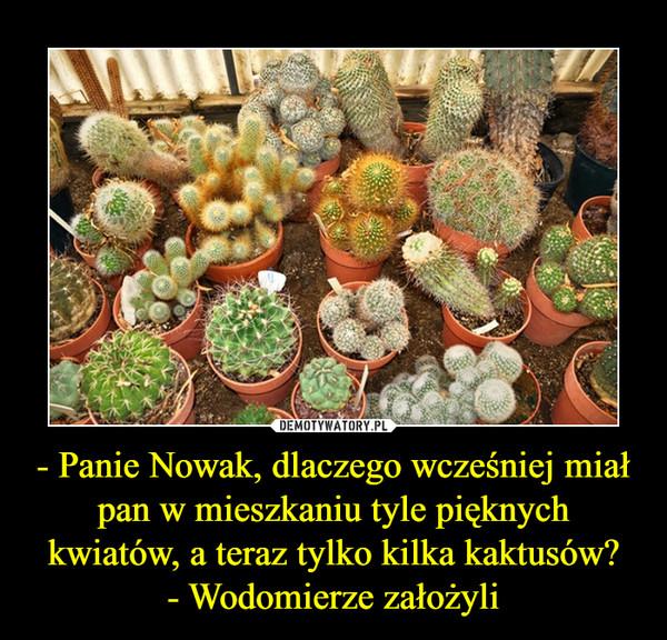 - Panie Nowak, dlaczego wcześniej miał pan w mieszkaniu tyle pięknych kwiatów, a teraz tylko kilka kaktusów?- Wodomierze założyli –
