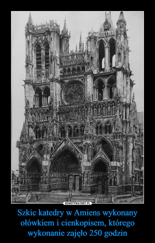 Szkic katedry w Amiens wykonany ołówkiem i cienkopisem, którego wykonanie zajęło 250 godzin –