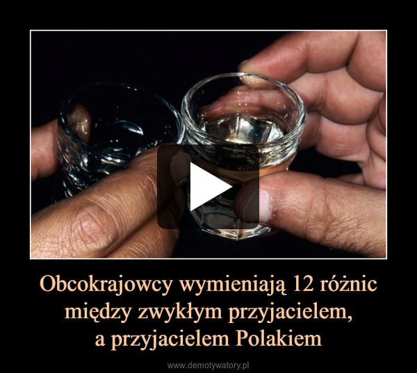 Obcokrajowcy wymieniają 12 różnic między zwykłym przyjacielem,a przyjacielem Polakiem –