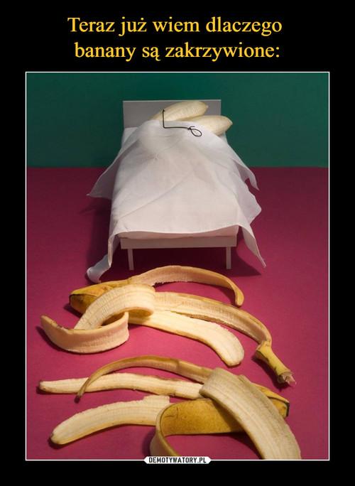 Teraz już wiem dlaczego  banany są zakrzywione: