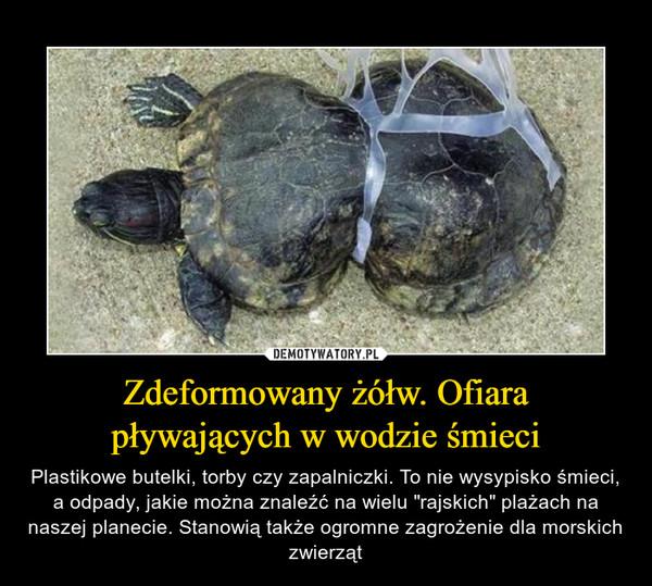 """Zdeformowany żółw. Ofiara pływających w wodzie śmieci – Plastikowe butelki, torby czy zapalniczki. To nie wysypisko śmieci, a odpady, jakie można znaleźć na wielu """"rajskich"""" plażach na naszej planecie. Stanowią także ogromne zagrożenie dla morskich zwierząt"""