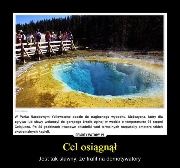 Cel osiągnął – Jest tak sławny, że trafił na demotywatory W Parku Narodowym Yellowstone doszło do tragicznego wypadku. Mężczyzna, który dla zgrywu lub sławy wskoczył do gorącego źródła zginął w wodzie o temperaturze 93 stopni Celsjusza. Po 24 godzinach kwasowe składniki wód termalnych rozpuściły amatora takich ekstremalnych kąpieli.