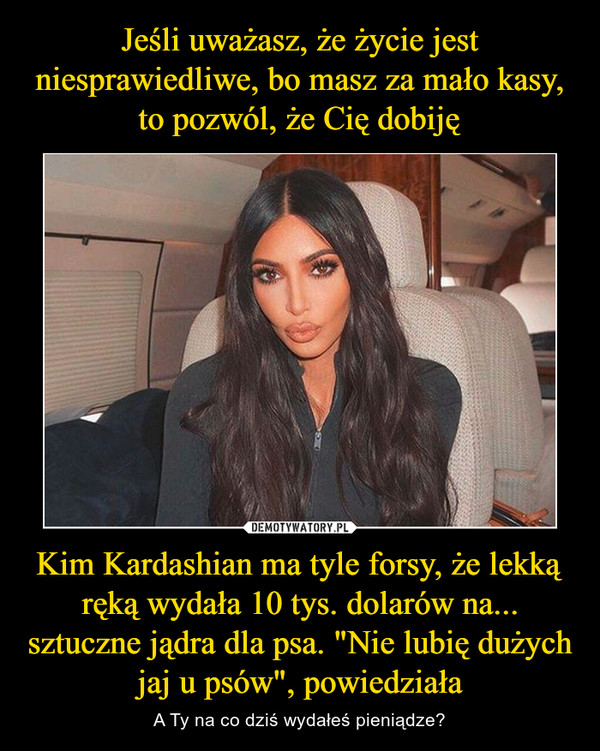 """Kim Kardashian ma tyle forsy, że lekką ręką wydała 10 tys. dolarów na... sztuczne jądra dla psa. """"Nie lubię dużych jaj u psów"""", powiedziała – A Ty na co dziś wydałeś pieniądze?"""