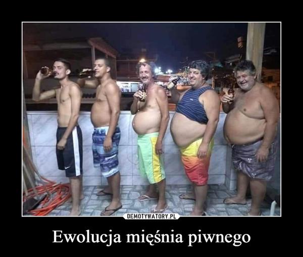 Ewolucja mięśnia piwnego –