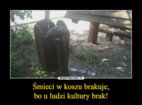 Śmieci w koszu brakuje,bo u ludzi kultury brak! –