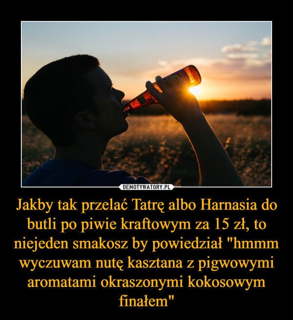 """Jakby tak przelać Tatrę albo Harnasia do butli po piwie kraftowym za 15 zł, to niejeden smakosz by powiedział """"hmmm wyczuwam nutę kasztana z pigwowymi aromatami okraszonymi kokosowym finałem"""" –"""