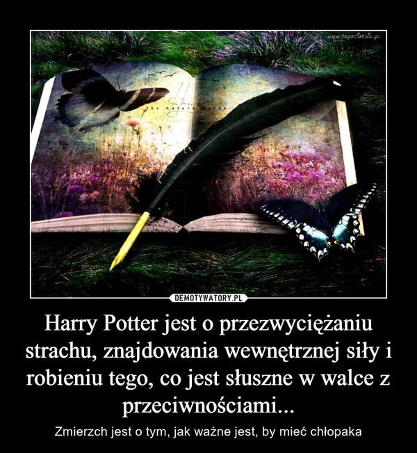 Harry Potter jest o przezwyciężaniu strachu, znajdowania wewnętrznej siły i robieniu tego, co jest słuszne w walce z przeciwnościami... – Zmierzch jest o tym, jak ważne jest, by mieć chłopaka