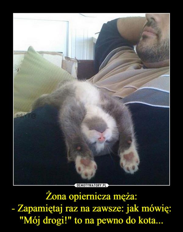 """Żona opiernicza męża:- Zapamiętaj raz na zawsze: jak mówię: """"Mój drogi!"""" to na pewno do kota... –"""