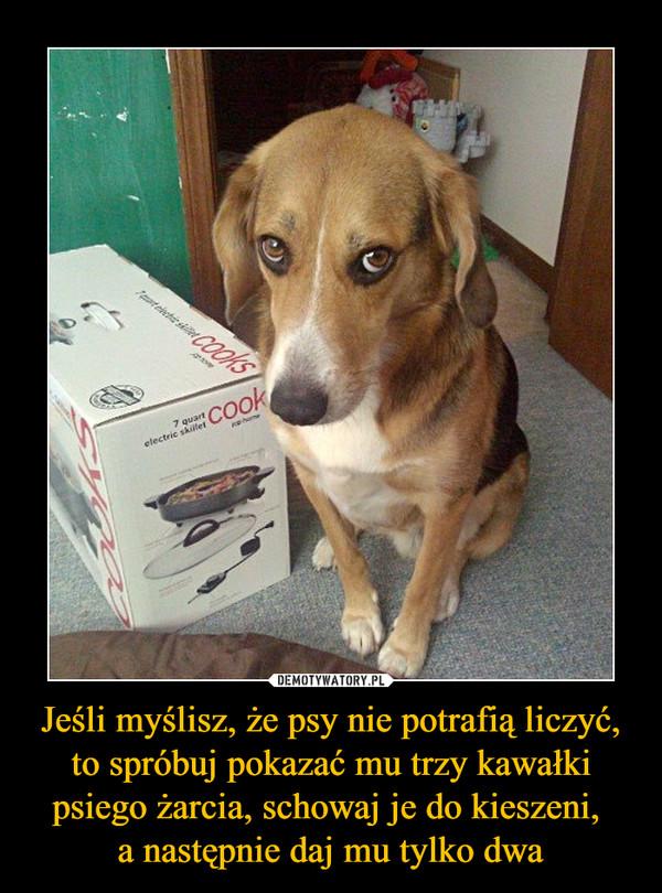 Jeśli myślisz, że psy nie potrafią liczyć, to spróbuj pokazać mu trzy kawałki psiego żarcia, schowaj je do kieszeni, a następnie daj mu tylko dwa –