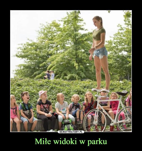 Miłe widoki w parku –