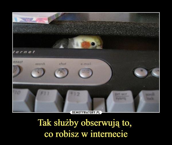 Tak służby obserwują to, co robisz w internecie –