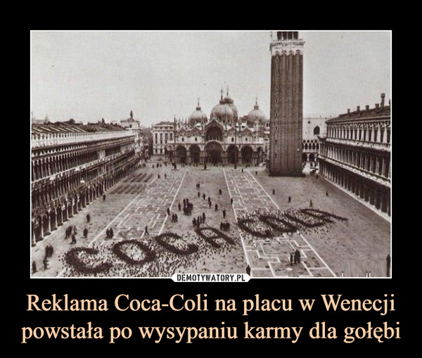 Reklama Coca-Coli na placu w Wenecji powstała po wysypaniu karmy dla gołębi –