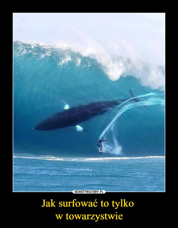 Jak surfować to tylko w towarzystwie –