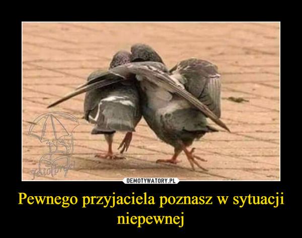 Pewnego przyjaciela poznasz w sytuacji niepewnej –