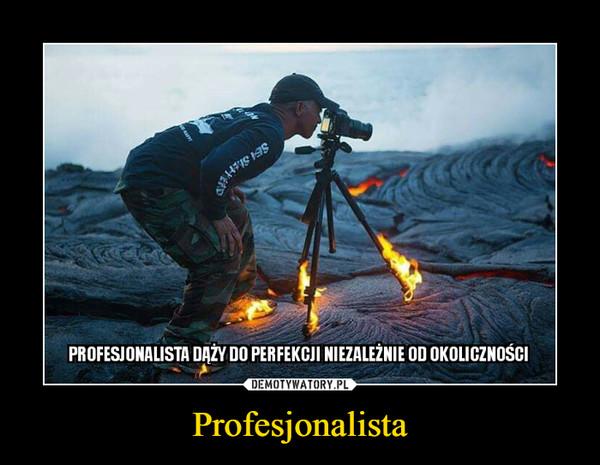 Profesjonalista –