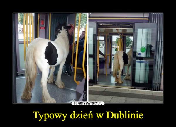 Typowy dzień w Dublinie –