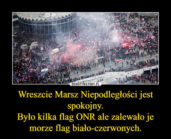 Wreszcie Marsz Niepodległości jest spokojny.Było kilka flag ONR ale zalewało je morze flag biało-czerwonych. –