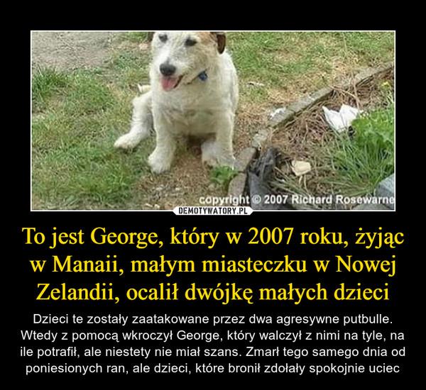 To jest George, który w 2007 roku, żyjąc w Manaii, małym miasteczku w Nowej Zelandii, ocalił dwójkę małych dzieci – Dzieci te zostały zaatakowane przez dwa agresywne putbulle. Wtedy z pomocą wkroczył George, który walczył z nimi na tyle, na ile potrafił, ale niestety nie miał szans. Zmarł tego samego dnia od poniesionych ran, ale dzieci, które bronił zdołały spokojnie uciec