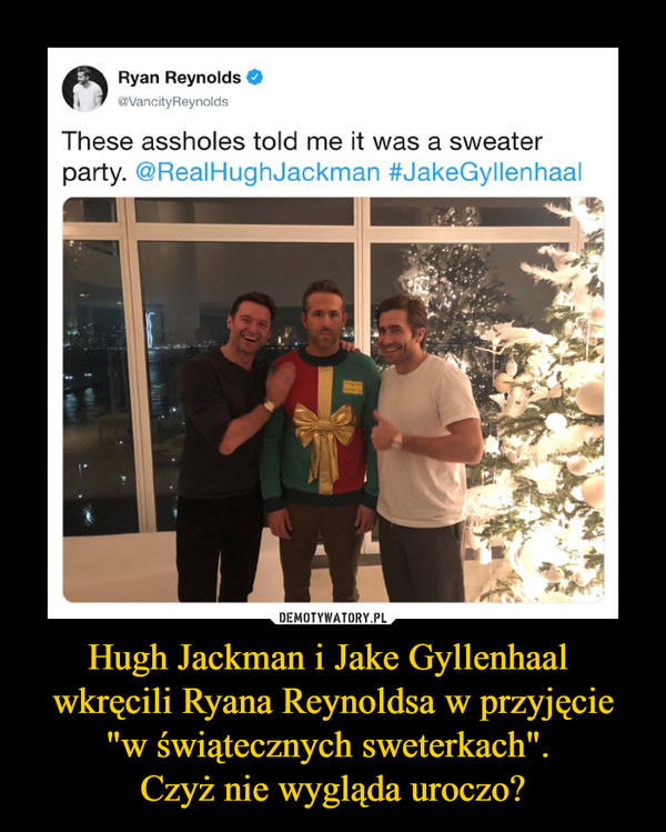 "Hugh Jackman i Jake Gyllenhaal wkręcili Ryana Reynoldsa w przyjęcie ""w świątecznych sweterkach"". Czyż nie wygląda uroczo? –  Ryan Reynolds 	@VancityReynolds 	These assholes told me it was a sweater 	party. @RealHughJackman #JakeGylIenhaal"
