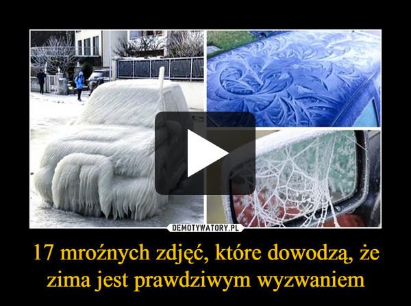 17 mroźnych zdjęć, które dowodzą, że zima jest prawdziwym wyzwaniem –
