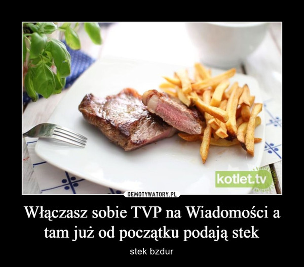 Włączasz sobie TVP na Wiadomości a tam już od początku podają stek – stek bzdur