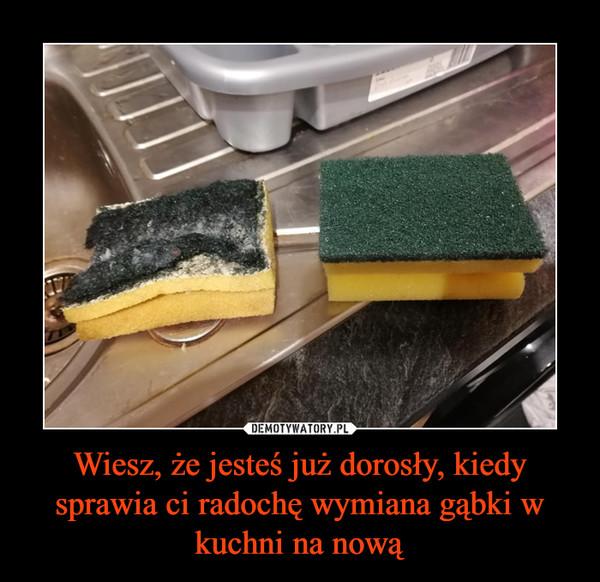 Wiesz, że jesteś już dorosły, kiedy sprawia ci radochę wymiana gąbki w kuchni na nową –