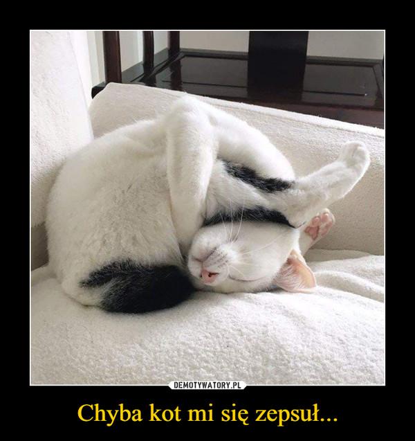 Chyba kot mi się zepsuł... –