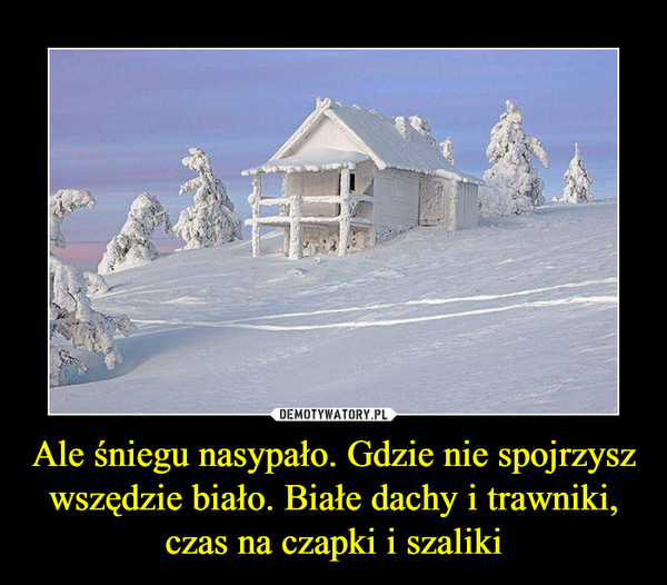 Ale śniegu nasypało. Gdzie nie spojrzysz wszędzie biało. Białe dachy i trawniki, czas na czapki i szaliki –