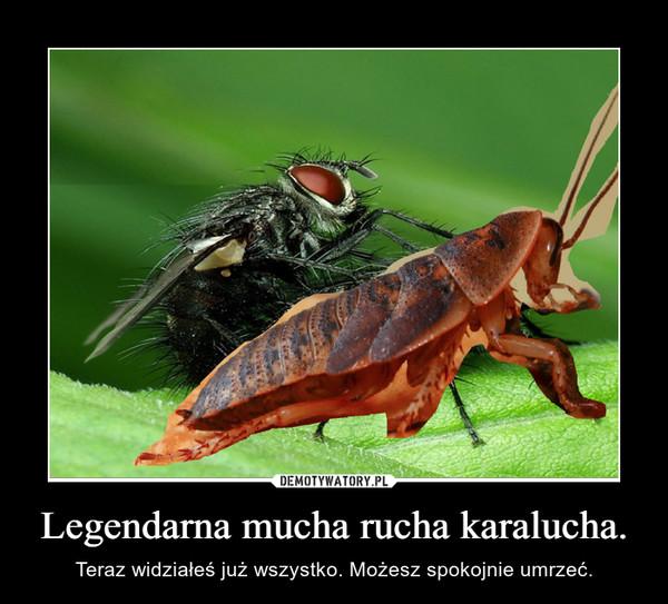 Legendarna mucha rucha karalucha. – Teraz widziałeś już wszystko. Możesz spokojnie umrzeć.