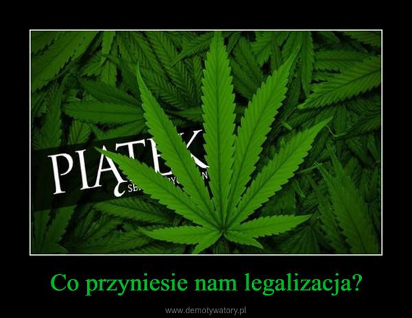 Co przyniesie nam legalizacja? –