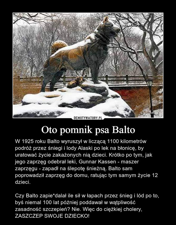 Oto pomnik psa Balto – W 1925 roku Balto wyruszył w liczącą 1100 kilometrów podróż przez śniegi i lody Alaski po lek na błonicę, by uratować życie zakażonych nią dzieci. Krótko po tym, jak jego zaprzęg odebrał leki, Gunnar Kassen - maszer zaprzęgu - zapadł na ślepotę śnieżną. Balto sam poprowadził zaprzęg do domu, ratując tym samym życie 12 dzieci. Czy Balto zapie*dalał ile sił w łapach przez śnieg i lód po to, byś niemal 100 lat później poddawał w wątpliwość zasadność szczepień? Nie. Więc do ciężkiej cholery, ZASZCZEP SWOJE DZIECKO!