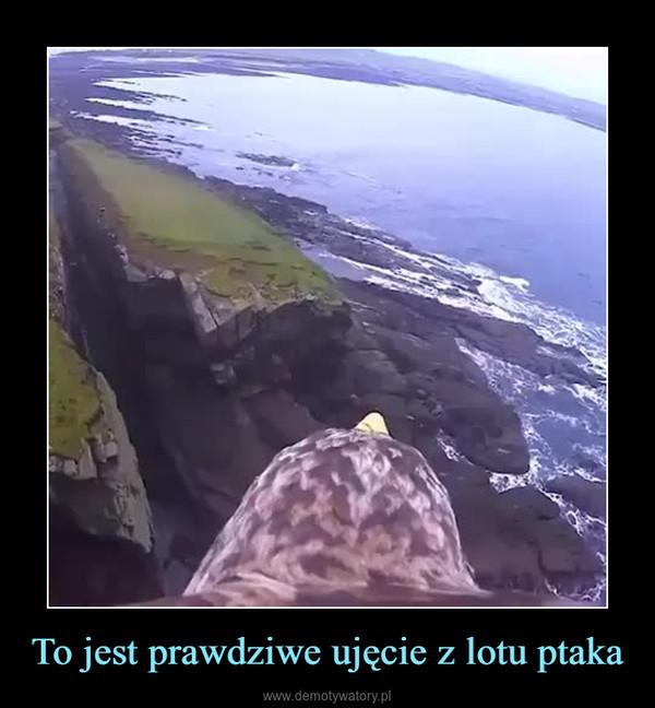 To jest prawdziwe ujęcie z lotu ptaka –