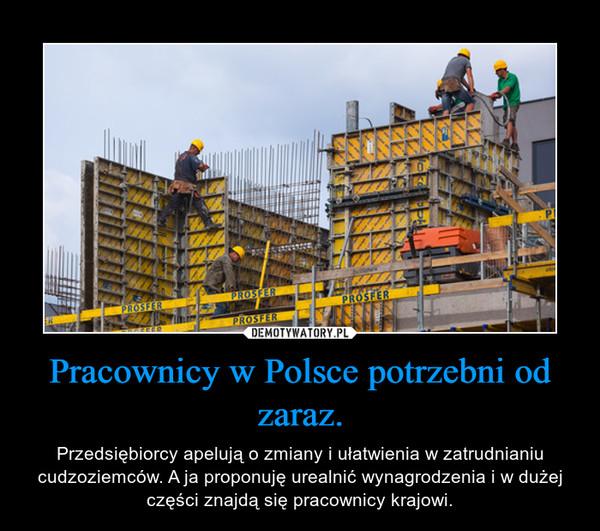 Pracownicy w Polsce potrzebni od zaraz. – Przedsiębiorcy apelują o zmiany i ułatwienia w zatrudnianiu cudzoziemców. A ja proponuję urealnić wynagrodzenia i w dużej części znajdą się pracownicy krajowi.
