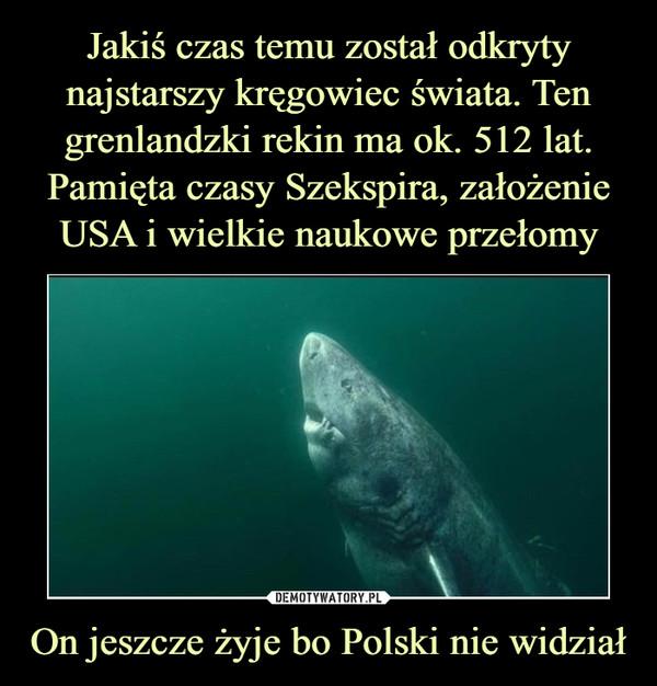 On jeszcze żyje bo Polski nie widział –