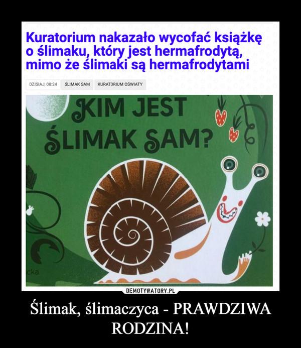 Ślimak, ślimaczyca - PRAWDZIWA RODZINA! –