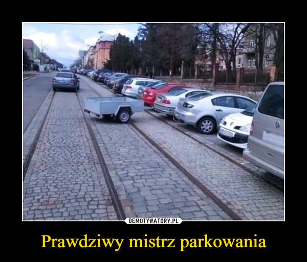 Prawdziwy mistrz parkowania –