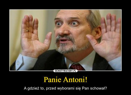 Panie Antoni!