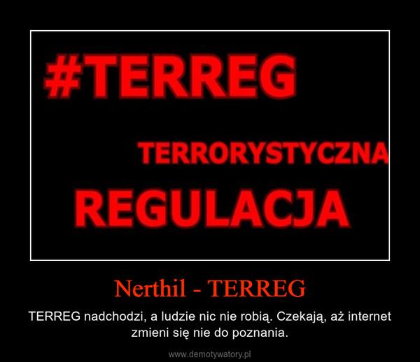 Nerthil - TERREG – TERREG nadchodzi, a ludzie nic nie robią. Czekają, aż internet zmieni się nie do poznania.