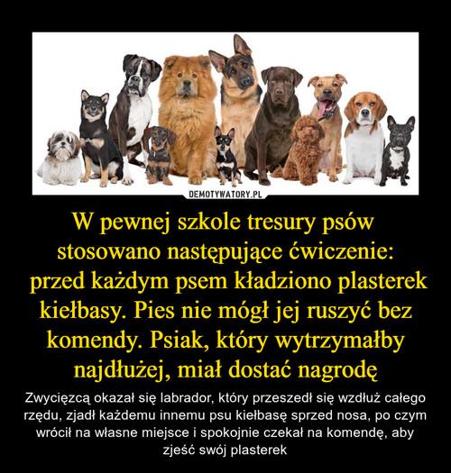 W pewnej szkole tresury psów  stosowano następujące ćwiczenie:  przed każdym psem kładziono plasterek kiełbasy. Pies nie mógł jej ruszyć bez komendy. Psiak, który wytrzymałby najdłużej, miał dostać nagrodę