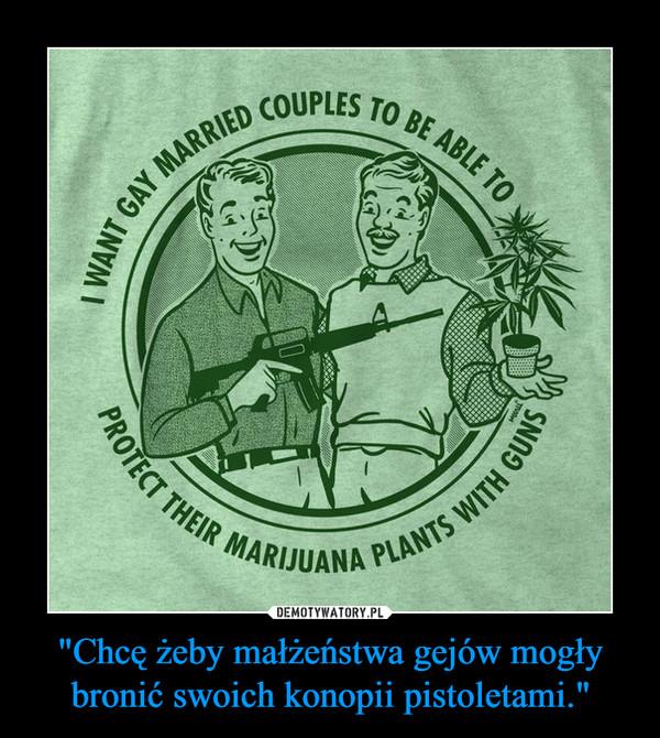 """""""Chcę żeby małżeństwa gejów mogły bronić swoich konopii pistoletami."""" –"""