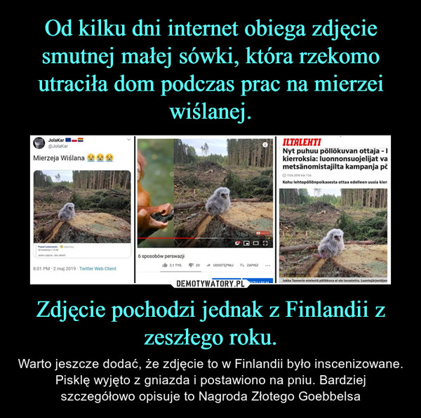 Zdjęcie pochodzi jednak z Finlandii z zeszłego roku. – Warto jeszcze dodać, że zdjęcie to w Finlandii było inscenizowane. Pisklę wyjęto z gniazda i postawiono na pniu. Bardziej szczegółowo opisuje to Nagroda Złotego Goebbelsa